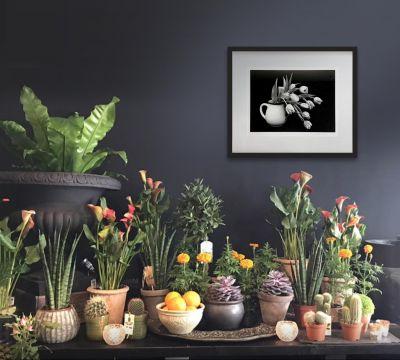 roccoflowers-400x360 News